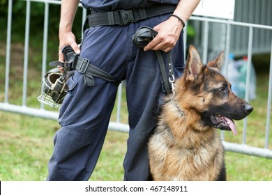 Policeman with a German shepherd dog