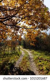 Polish autumn landscape
