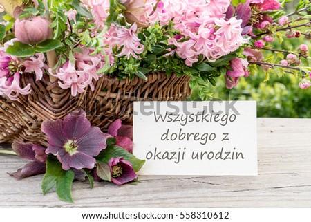 Polish Birthday Card Hyacinths Text Congratulations Stock Photo