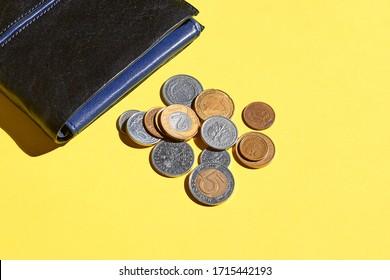 Polish coins zloty. Empty wallet. Cash money.