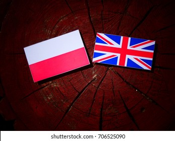 Polish flag with British flag on a tree stump isolated