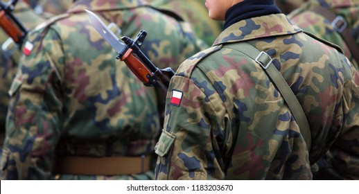 Polish patch flag on soldiers arm. Poland military unifor