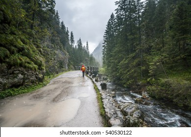 Polish Tatra mountains, Koscieliska valley