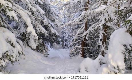 Polish winter in Karkonosze mountains - Shutterstock ID 1917031181
