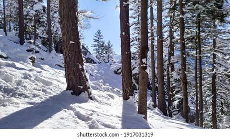 Polish winter in Karkonosze mountains - Shutterstock ID 1917031319