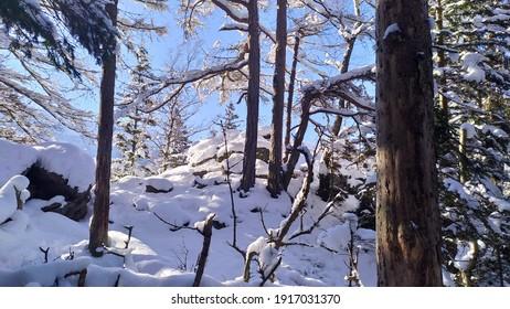 Polish winter in Karkonosze mountains - Shutterstock ID 1917031370