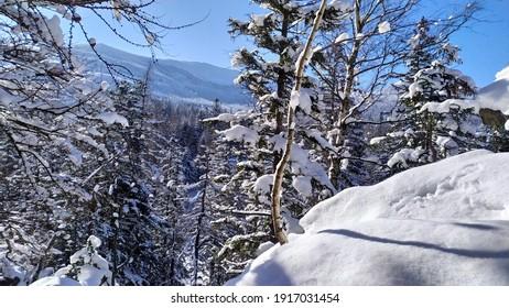 Polish winter in Karkonosze mountains - Shutterstock ID 1917031454