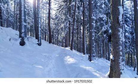 Polish winter in Karkonosze mountains - Shutterstock ID 1917031502