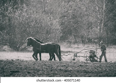 Polkowice, Poland - April 3, 2016: Farmer sowing grain on a field by a manual seeder on horse-drawn today it's rare view.