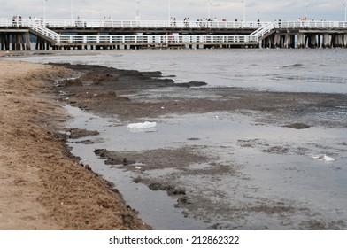 Pollution of the Baltic Sea. Sopot, Poland