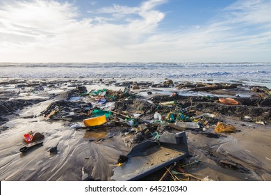 Pollution of the beach during winter Montalivet, medoc gironde france