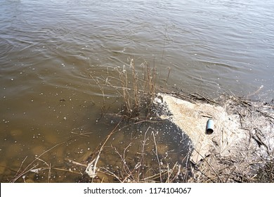 Pollution of the Elbe River near Magdeburg