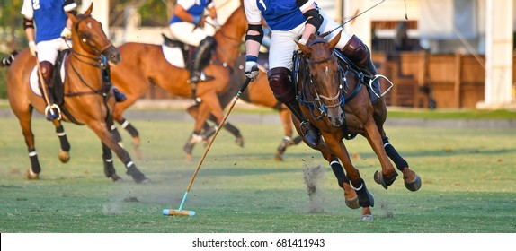 Polo horse player ride a horse In Games.