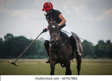 Polo Horse Riding in Action, Close Up of Single Player