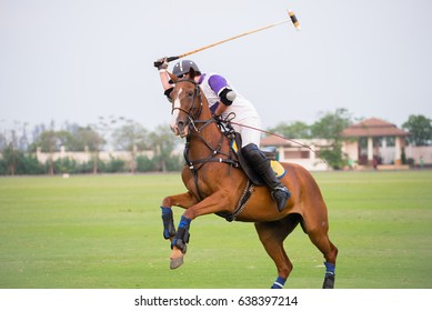 Polo player and horse In Games.