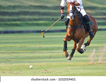 The polo player is riding on a horse.