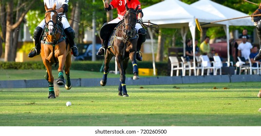 The polo player is riding on a horse to grab a ball.