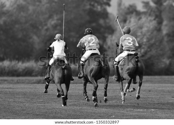 Polo players chasing the ball. Horizontal, view from the back, black and white.