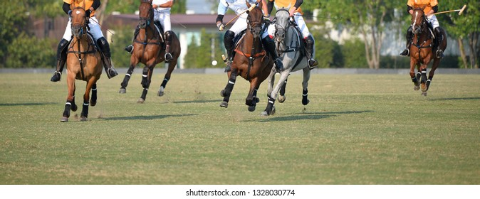 The polo pony and player are playing im games.