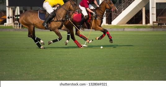 Polo Pony Player protect a polo ball.