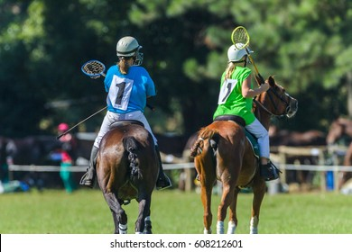 Polocrosse Girls Horses Game Polocrosse horse ponys players teenage girls unidentified equestrian sport game.