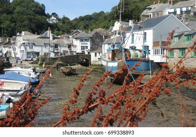 Polperro, Cornwall - boats in the harbour at low tide, with tourists, houses, and brown foliage in the foreground