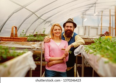 polycarbonate greenhouse. polycarbonate material for greenhouse. polycarbonate greenhouse industry. couple og gardeners in polycarbonate greenhouse. i have the best job in the world