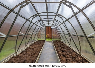 Polycarbonate greenhouse in the private garden. View from the inside