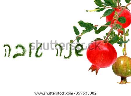 Pomegranate Fruit Symbol Jewish New Year Stock Photo Edit Now