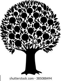 Pomegranate tree isolated on White background.  illustration