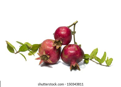 Pomegranates with green leaves on a white background