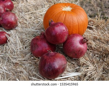Pomegranates with Pumpkin on Hay Bale
