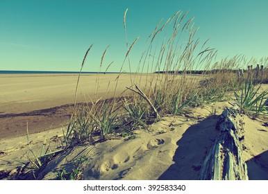 Pomeranian coast .White Sea .Russia, Arkhangelsk region.