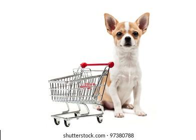 Pomeranian dog next to an empty shopping cart, over white