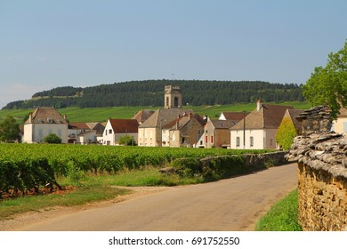 Pommard, an old village in Burgundy, France  5 km from Beaune,  famous for it's red wine.