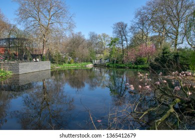 Pond At The Artis Zoo Amsterdam The Netherlands 2019