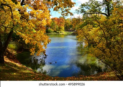 Pond in the autumn park, orange and red autumn trees, blue lake and ducks