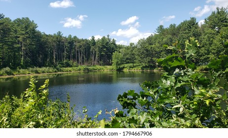 Pond beneath blue sky and clouds, central Massachusetts