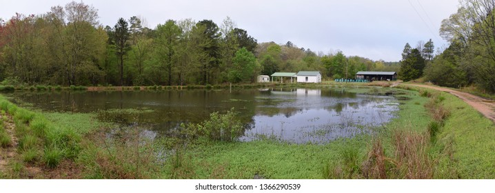 Pond and buildings in spring at the University of Mississippi Field Station