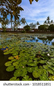 Pond in Candidasa - Bali Island Indonesia - nature travel background