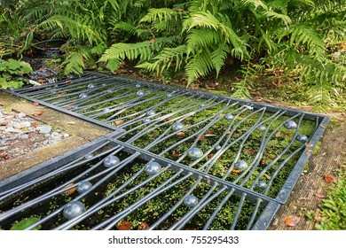 Pond Covers Images Stock Photos Vectors Shutterstock