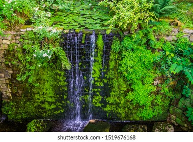 pond ending in a waterfall, beautiful garden architecture, nature background