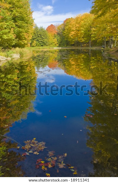 pond-fall-day-600w-18911341.jpg