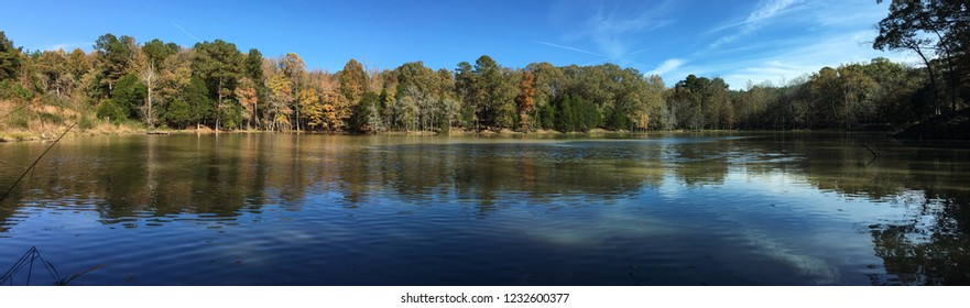 Pond in fall in Oxford Mississippi