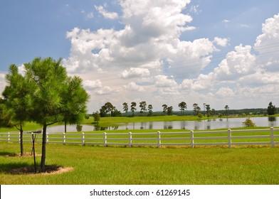 pond in field on farm
