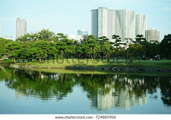 https://image.shutterstock.com/image-photo/pond-garden-japan-600w-724885906.jpg