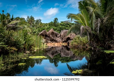 The Pond at Grand Anse on the beautiful island of La Digue, the Seychelles.