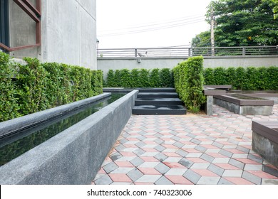 Pond modern in the garden landscape and Shrub screen wall concrete