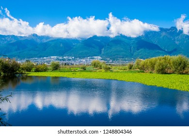 The pond near rice field near Erhai lake in Dali, Yunnan province, China.