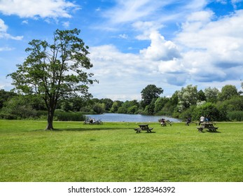 A pond and picnic tables in a park